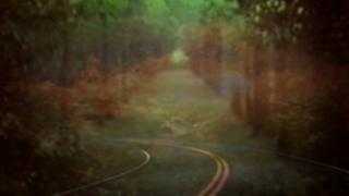 View stills from a new video for 'Dye The Water Green' directed by Bibio and Michael Robinson